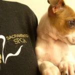 Profile photo of Sacramento SPCA